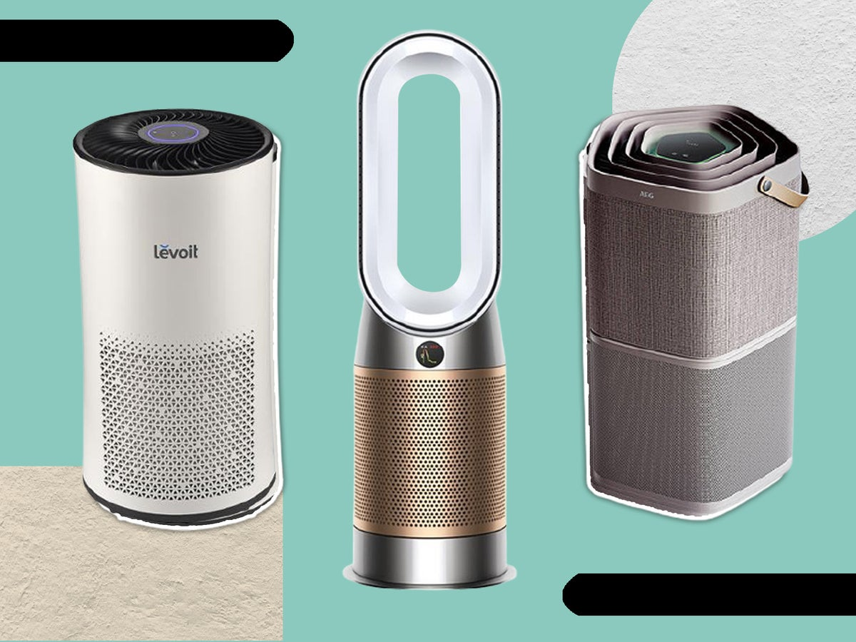 Best Homelabs Air Purifier And The Artwork Of Time Administration